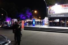 festival cinema (6)