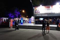 festival cinema (7)
